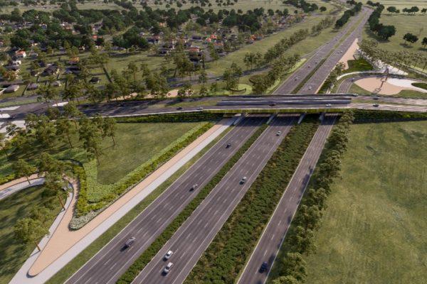 P8_Duncans_Rd_interchange